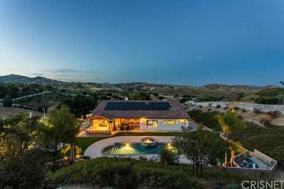 Acton, Canyon Country, Saugus, Santa Clarita, Castaic, Stevenson Ranch, Newhall, Valencia, Agua Dulce Single Family Home For Sale: 29826 Arroyo Oak Lane