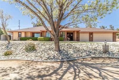 Palmdale Single Family Home For Sale: 802 Lisa Street
