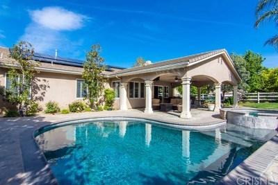 Acton, Canyon Country, Saugus, Santa Clarita, Castaic, Stevenson Ranch, Newhall, Valencia, Agua Dulce Single Family Home For Sale: 30432 Hidden Valley Court