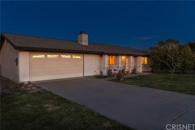 Lancaster Single Family Home For Sale: 41018 176th Street E