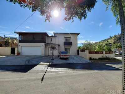Castaic Single Family Home For Sale: 30369 San Martinez Road