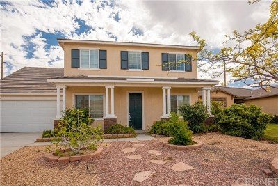 Palmdale Single Family Home For Sale: 39244 Nicole Drive
