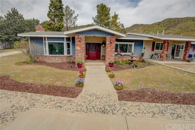 Leona Valley Single Family Home For Sale: 8824 Cache Street