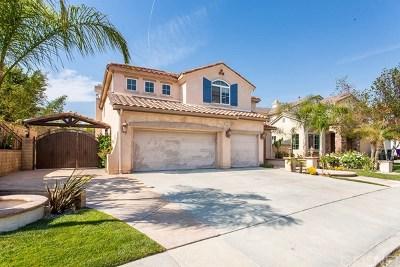 Valencia Single Family Home For Sale: 23965 Francisco Way