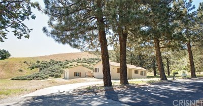 Leona Valley Single Family Home For Sale: 40100 97th Street W