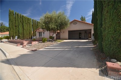 Hemet Single Family Home For Sale: 2663 Peach Tree Street