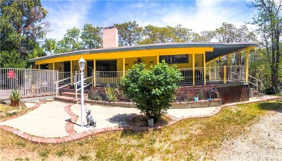 Green Valley Single Family Home For Sale: 39638 Calle Chiquito