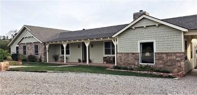 Agua Dulce Single Family Home For Sale: 10350 Pike Road