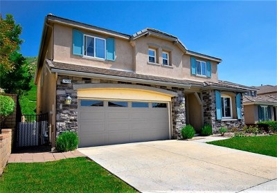 Saugus Single Family Home For Sale: 29220 Garnet Canyon Drive