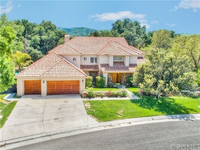 Canyon Country Single Family Home For Sale: 15556 Bronco Drive