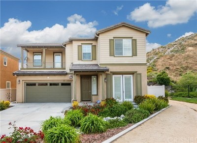 Canyon Country Single Family Home For Sale: 29621 Sturgeon Court