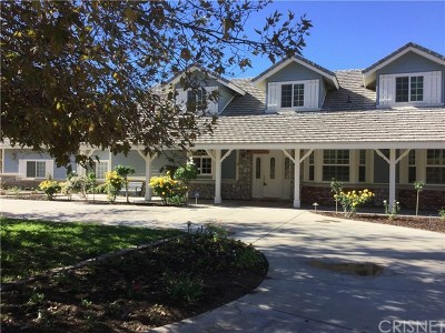 Agua Dulce Single Family Home For Sale: 34725 Country Breeze Lane