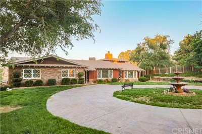 Leona Valley Single Family Home For Sale: 39954 90th Street W