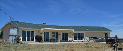Lake Hughes Single Family Home For Sale: 44151 Lake View Drive