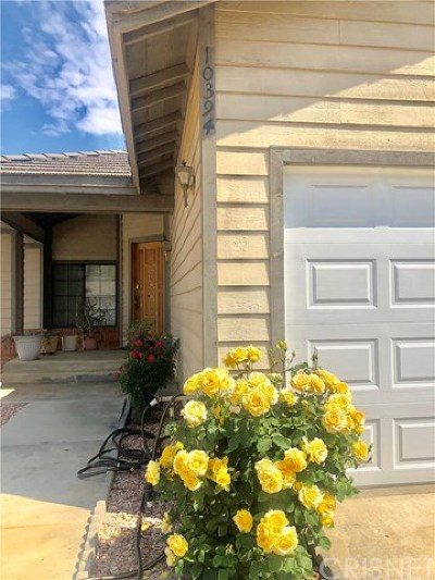 Moreno Valley Single Family Home For Sale: 10394 Meadow Creek Drive
