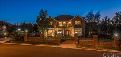 Palmdale Single Family Home For Sale: 41707 Misha Lane