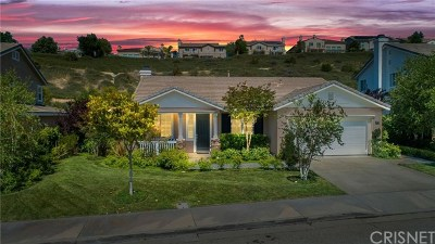 Acton, Canyon Country, Saugus, Santa Clarita, Castaic, Stevenson Ranch, Newhall, Valencia, Agua Dulce Single Family Home For Sale: 29211 Via Solano