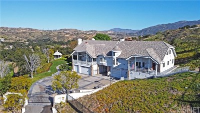 Acton, Canyon Country, Castaic, Newhall, Saugus, Stevenson Ranch, Valencia, Agua Dulce, Santa Clarita Single Family Home For Sale: 24540 Desert Avenue