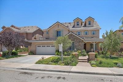 Acton, Canyon Country, Castaic, Newhall, Saugus, Santa Clarita, Stevenson Ranch, Valencia, Agua Dulce Single Family Home For Sale: 29366 Hacienda Ranch Court