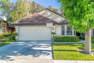 Acton, Canyon Country, Saugus, Santa Clarita, Castaic, Stevenson Ranch, Newhall, Valencia, Agua Dulce Single Family Home For Sale: 19744 Terri Drive