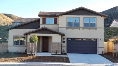 Menifee Single Family Home For Sale: 24243 Deputy Way