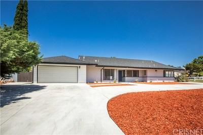 Northridge Single Family Home For Sale: 9813 Shoshone Avenue