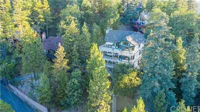 Lake Arrowhead Single Family Home For Sale: 312 Grizzly Road