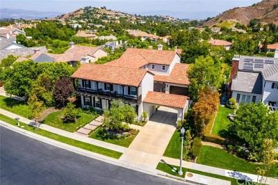 Calabasas Single Family Home For Sale: 3890 Prado Del Trigo