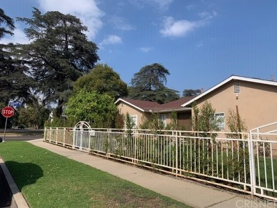 Sherman Oaks Single Family Home For Sale: 5348 Allott Avenue