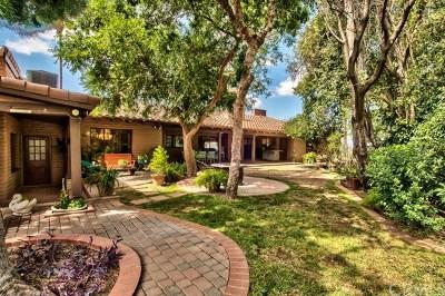 San Bernardino Single Family Home For Sale: 5830 N Mountain View Avenue