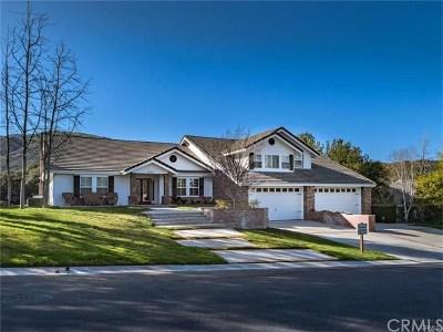 Murrieta Single Family Home For Sale: 38281 Shoal Creek Drive