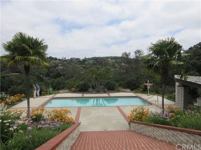 Fallbrook Single Family Home For Sale: 2365 Palo Vista Road