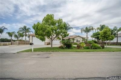 Menifee Single Family Home For Sale: 27680 Benigni Avenue