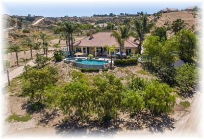 Temecula Single Family Home For Sale: 39039 Gray Squirrel Road