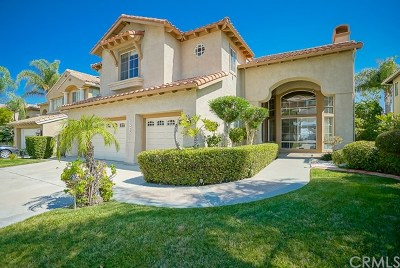 Murrieta Single Family Home For Sale: 23829 Via Segovia