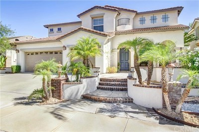 Temecula Single Family Home For Sale: 32141 Camino Rabago