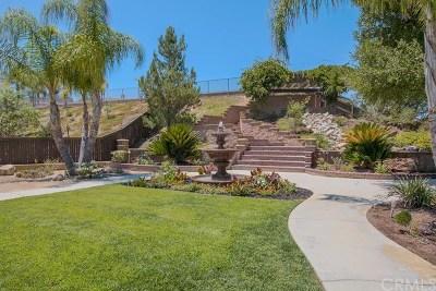 Murrieta Single Family Home For Sale: 23443 Karen Place