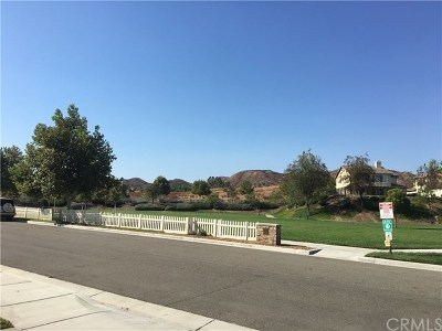 Wildomar Single Family Home For Sale: 23615 Westpark Street