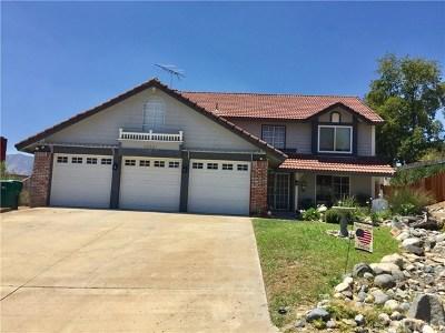 Wildomar Single Family Home For Sale: 33307 Willow Tree Lane