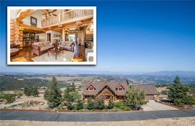 Murrieta Single Family Home For Sale: 43780 Paseo Espinazo