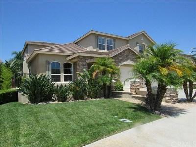 Temecula Single Family Home For Sale: 32076 Camino Rabago