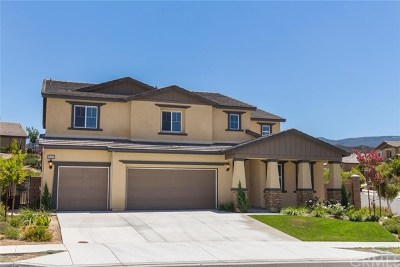 Temecula Single Family Home For Sale: 45142 Morgan Heights Road