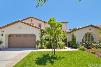 Temecula Single Family Home For Sale: 34609 Collier Falls Ct