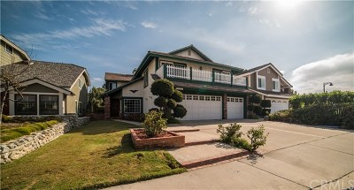 Mission Viejo Single Family Home For Sale: 21862 Consuegra
