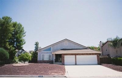 Canyon Lake Single Family Home For Sale: 22589 Lighthouse Drive