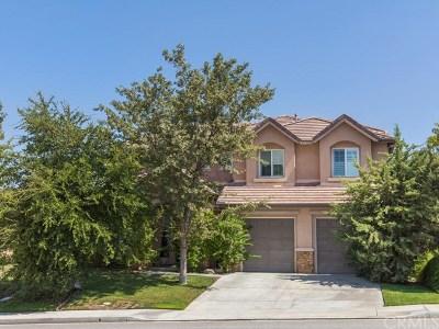 Temecula Single Family Home For Sale: 45082 Marsanne Street