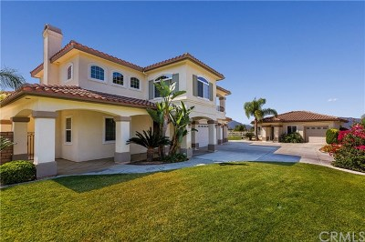 Temecula Single Family Home For Sale: 43014 Brighton Ridge Lane