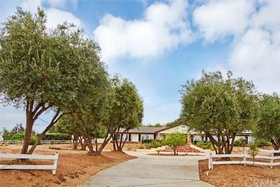 Riverside Single Family Home For Sale: 30800 Lolita Road