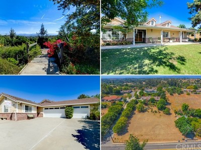 Fallbrook Single Family Home For Sale: 1462 Buckboard Lane
