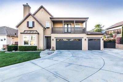 Murrieta Single Family Home For Sale: 39753 Payton Court